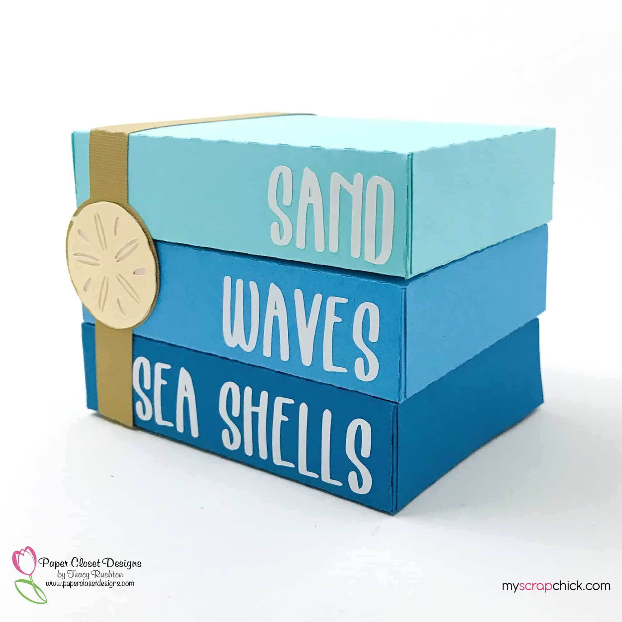Sand Waves Sea Shells